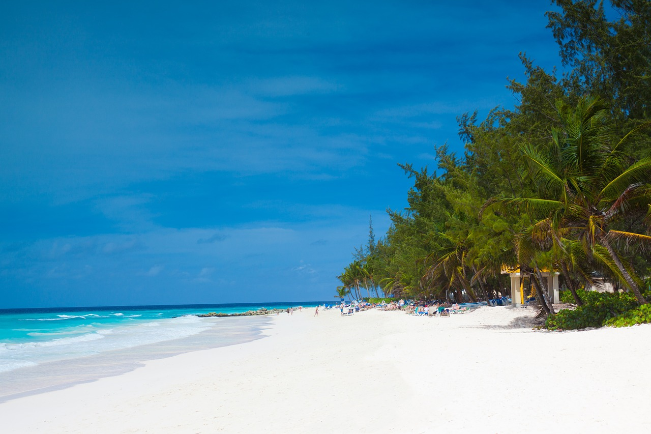Business Class flights to Barbados