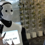Air-New-Zealand-Humanoid-Robot